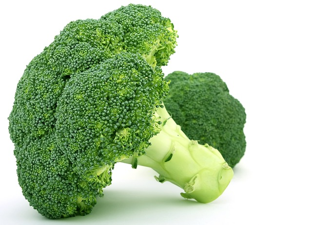 dogs can eat broccoli