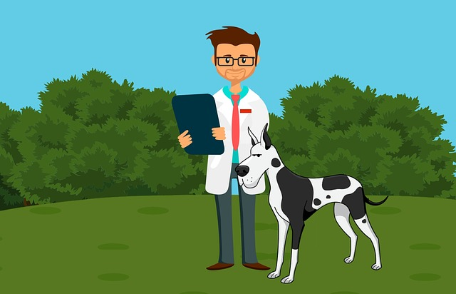 How To Find A Reputable Dog Breeder for service dog work