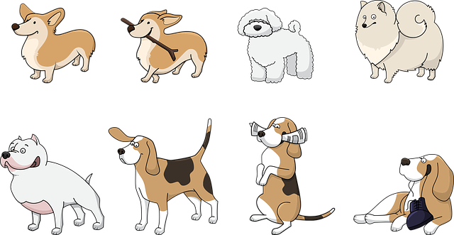 emotional support animals in ontario