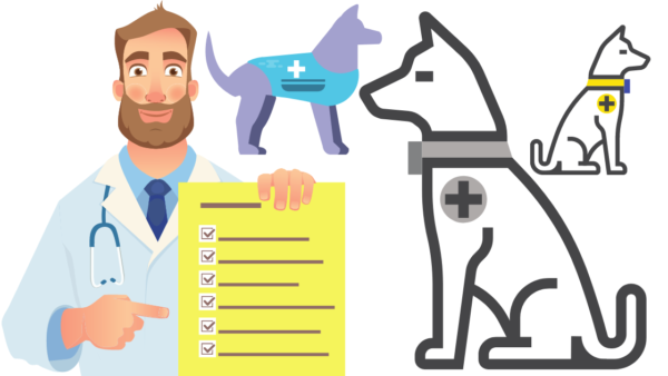 doctor note for service dog
