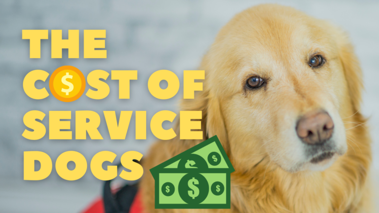cost of service dogs